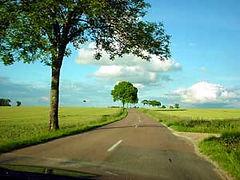 road-to-gite1.jpg
