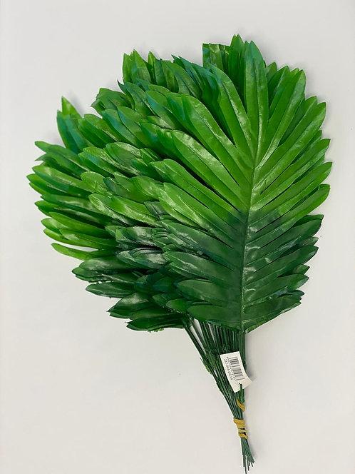 Lysegrønne palmeblader bunt med 12 blader