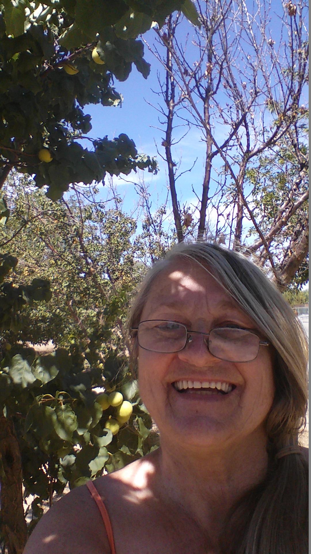Melitta & Apricots 6-16 6-9-2016 10-54-40 AM