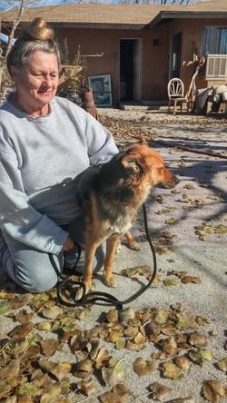 Dog Rescue LLA 1-12-16 ID Photo
