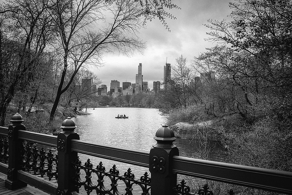 New York Central Park Photography