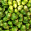Thumbnail: Water Chestnut (Singhara)