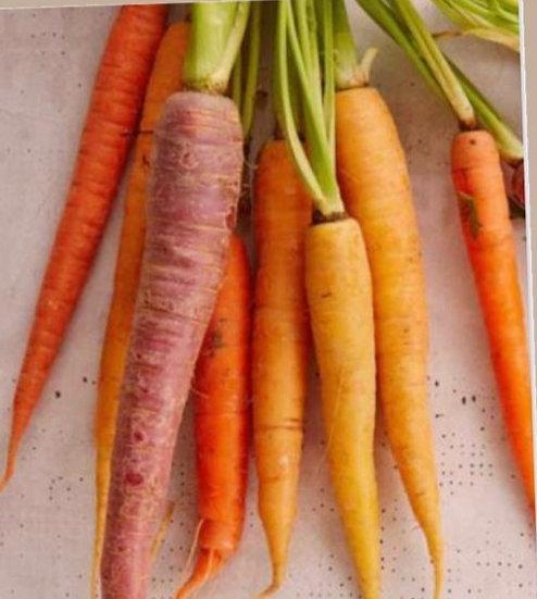 Heirloom Baby Carrot Mix