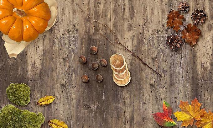 autumn-3737582_1920.jpg