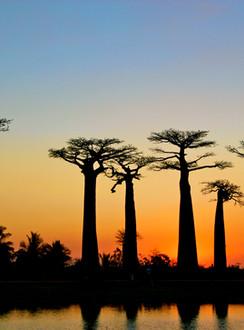 Madagaskar 2016