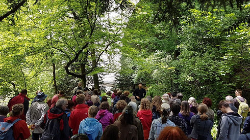 Vorträge und Lehrgänge zu Botanik, Wildkräuter und Heilkräuter