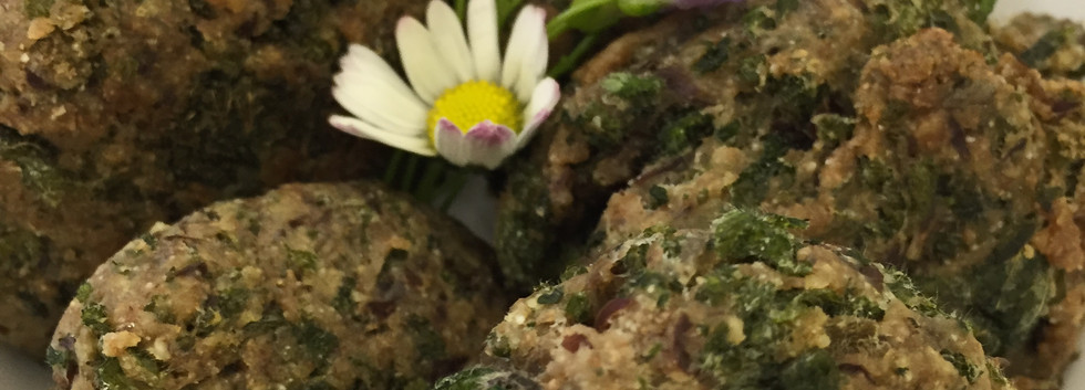 Wildkräuterkochkurs