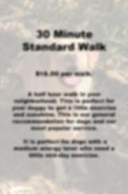 30 Minute Dog Walk