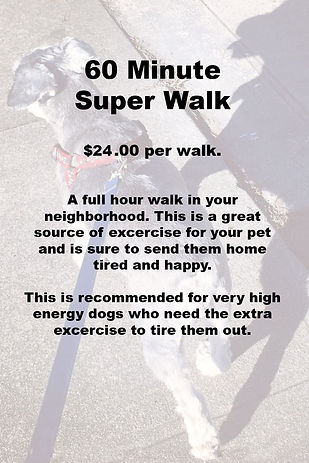 60 Minute Dog Walk