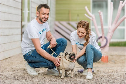 bigstock-Two-Volunteers-Of-Animals-Shel-