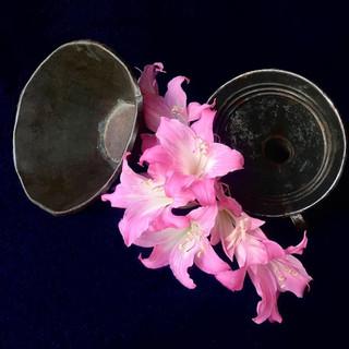 Ramo de lirios rosados con embudos. (Bouquet of Pink Lilies with Funnels).jpg