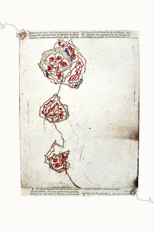 Flores Para La Tumba De Un Inmigrante (Flowers for an Empty Grave)