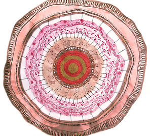 2011 Nucleus-ities matrix c.jpg