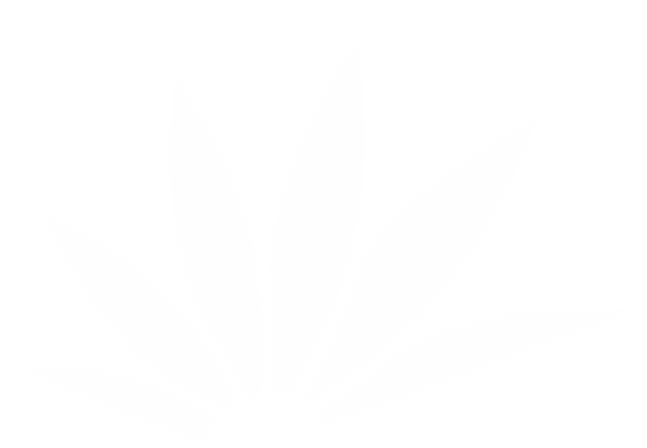 leaf-white-05.png