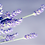 Thumbnail: Lavender Balm