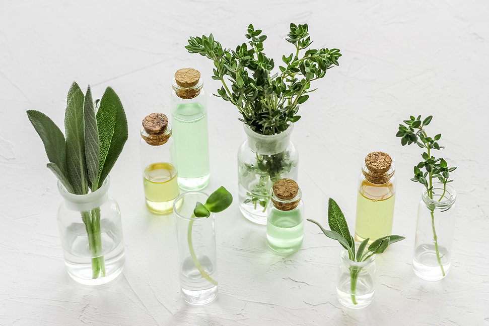 bottles filled with herbs, containers with liquid