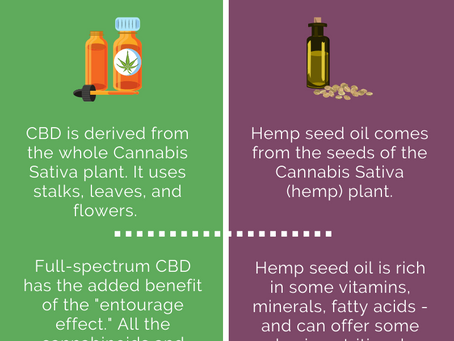 Why You Need to Know the Differences Between CBD Oil and Hemp Seed Oil