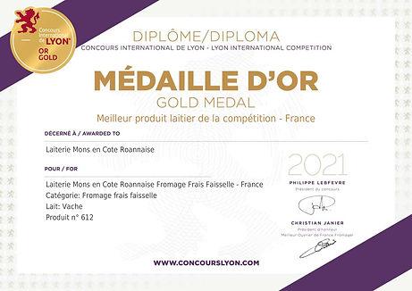 Diplôme_Concours International de Lyon_2