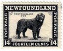 Celo dos Correiros de Terranova / Newfoundland PostOfice Stamp