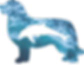 LOGO TURSIOPS 2.png