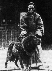 Imagens antigas, tiradas no Tibete, mostrando mastins tibetanos / Old pictures of Mastim in Tibet