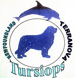 Antigo Logo Tursiops / Old Tursiops Logo