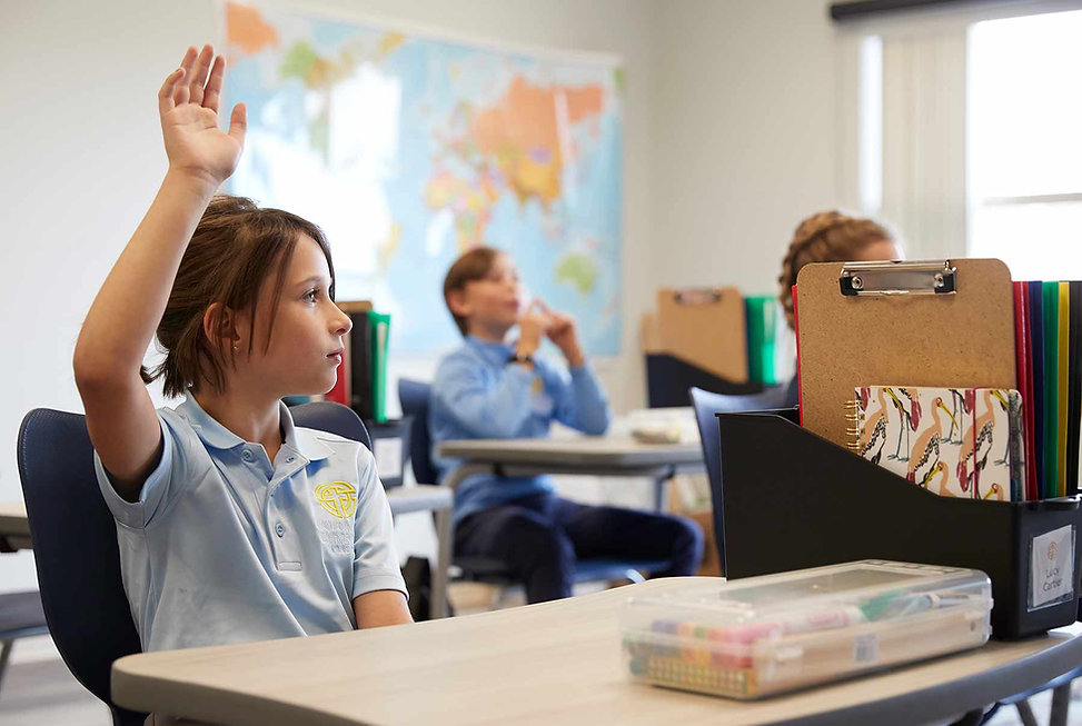 Girl_student_raises_hand_classroom_eleme
