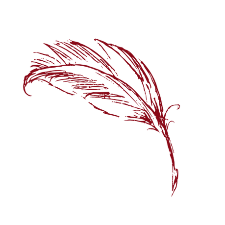 Feather (1).png