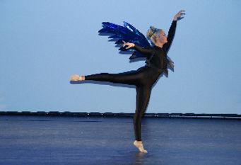 Papillon1-ballettschule-erdweg-aachen.jp