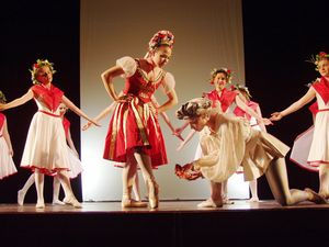 Cindarella2-ballettschule-erdweg-aachen.