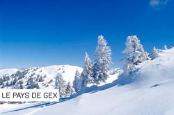 paysage-montsjura34_edited