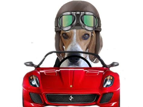 Advertencia a los propietarios de vehículos no asegurados.