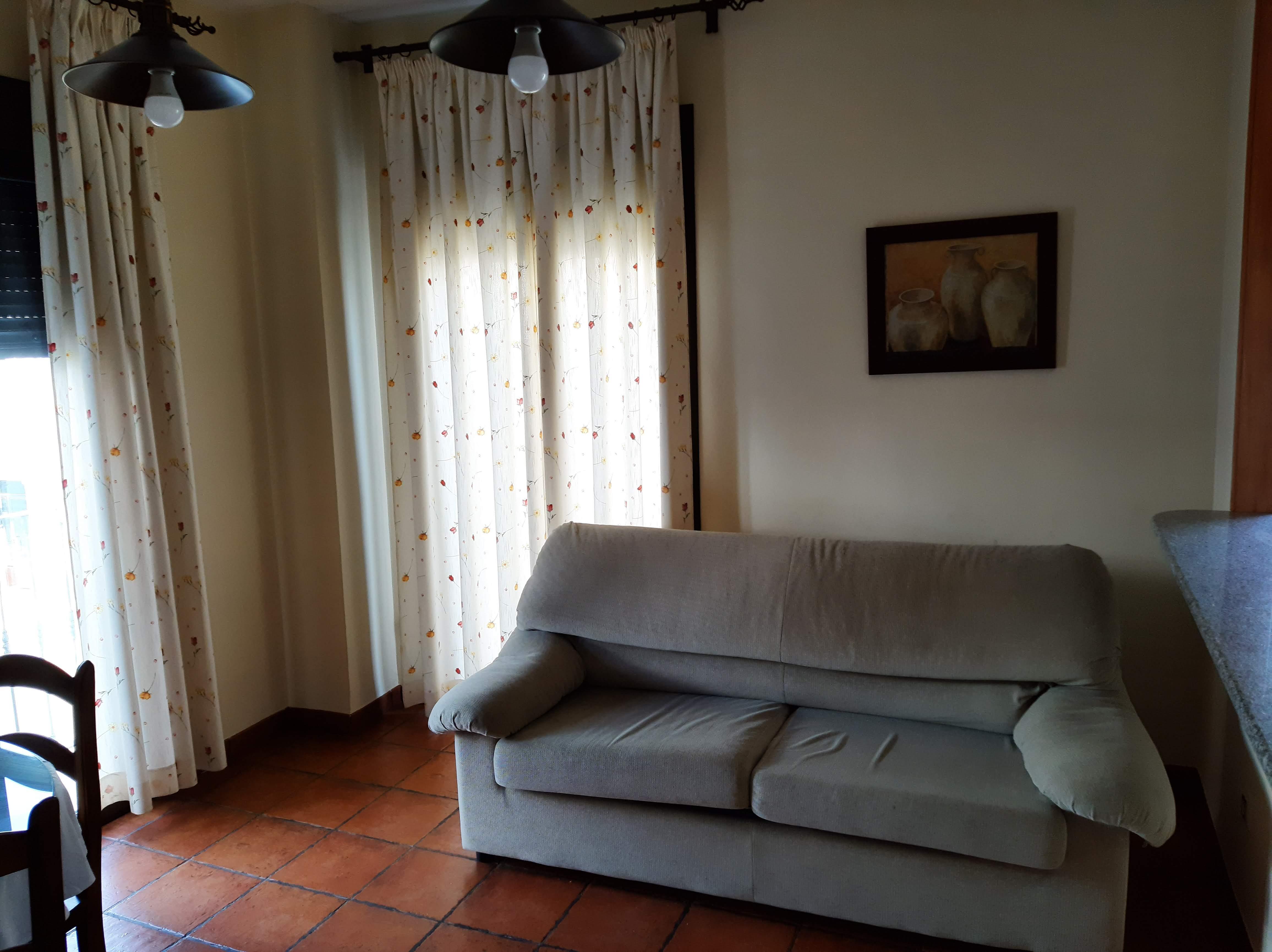 apartamentos turisticos azuaga sofa