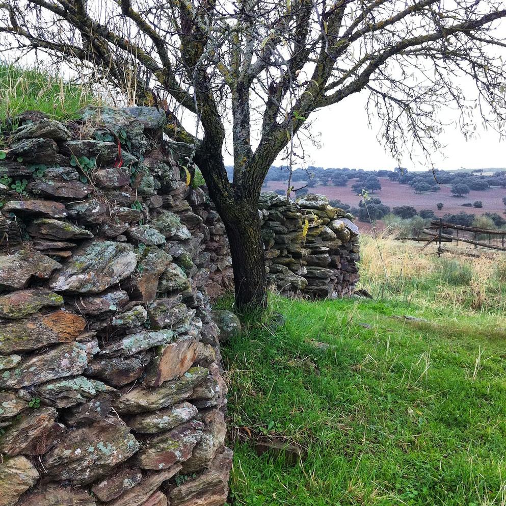 Construcciones de piedra en medio natural