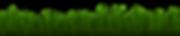 grass-3189393_1920.png