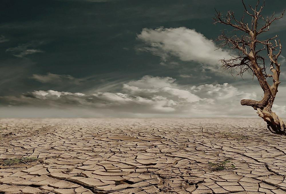 Cambio Climático. Acuerdo de París