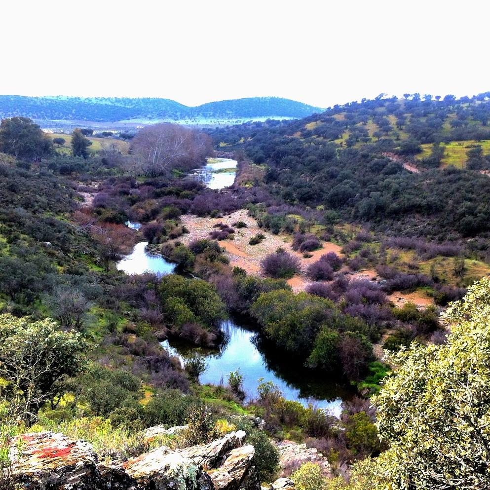 Sierra de Azuaga