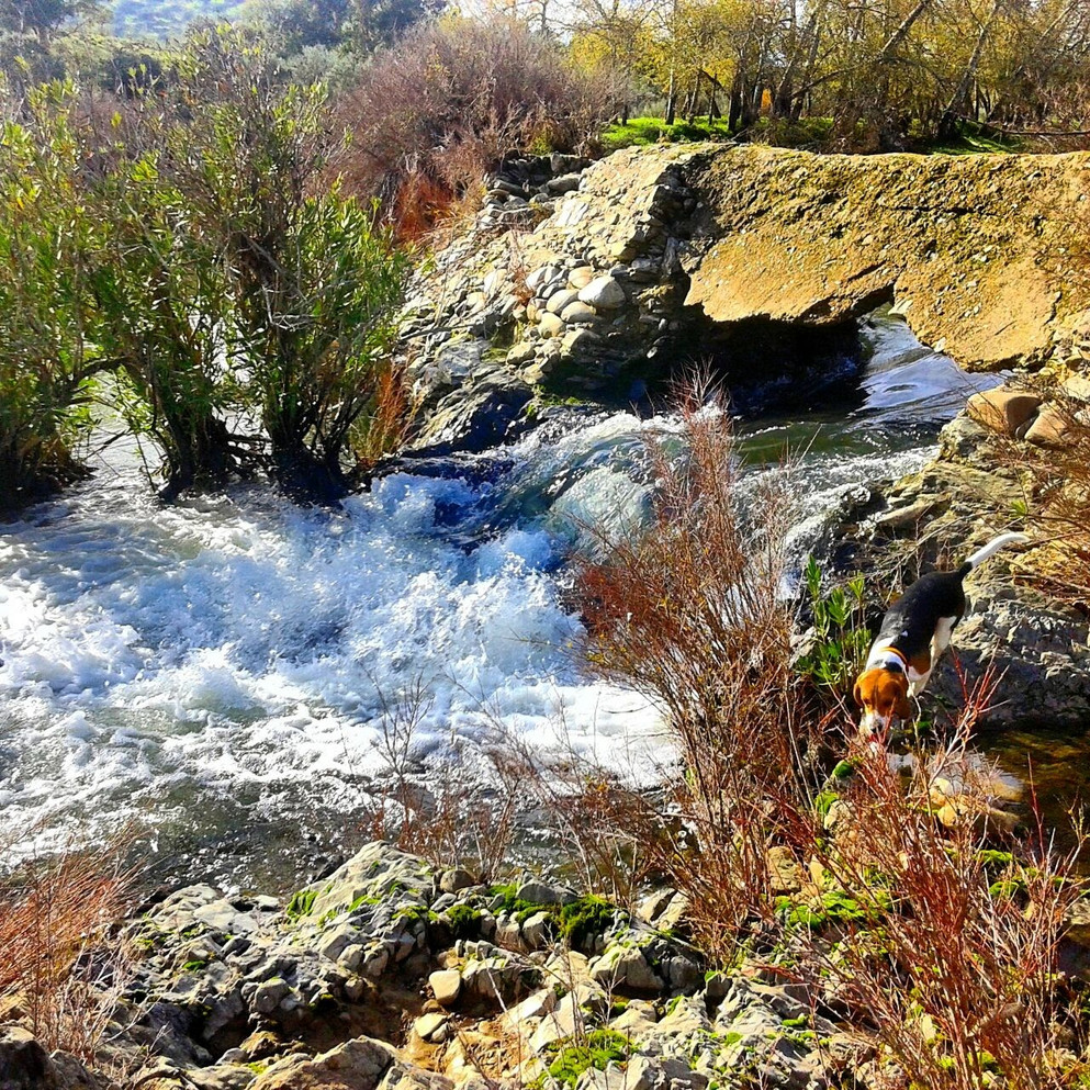 Salto de agua antiguo molino de harina
