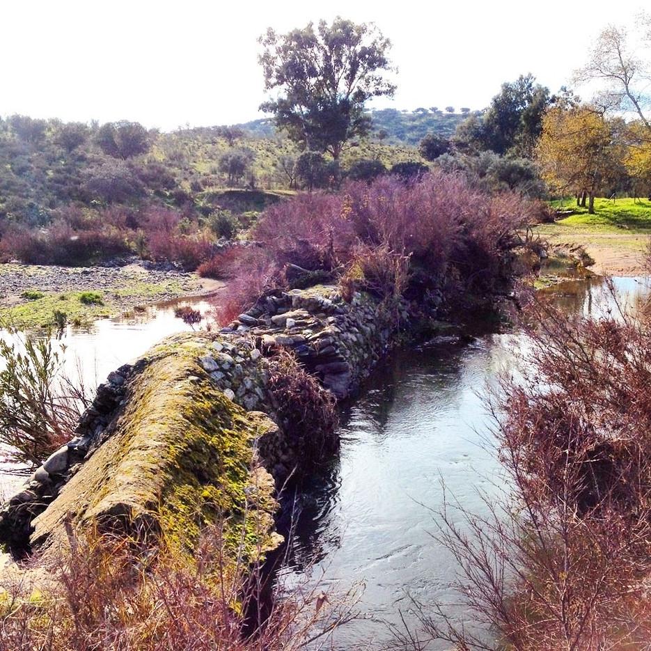 Salto de agua de antiguo molino de harina