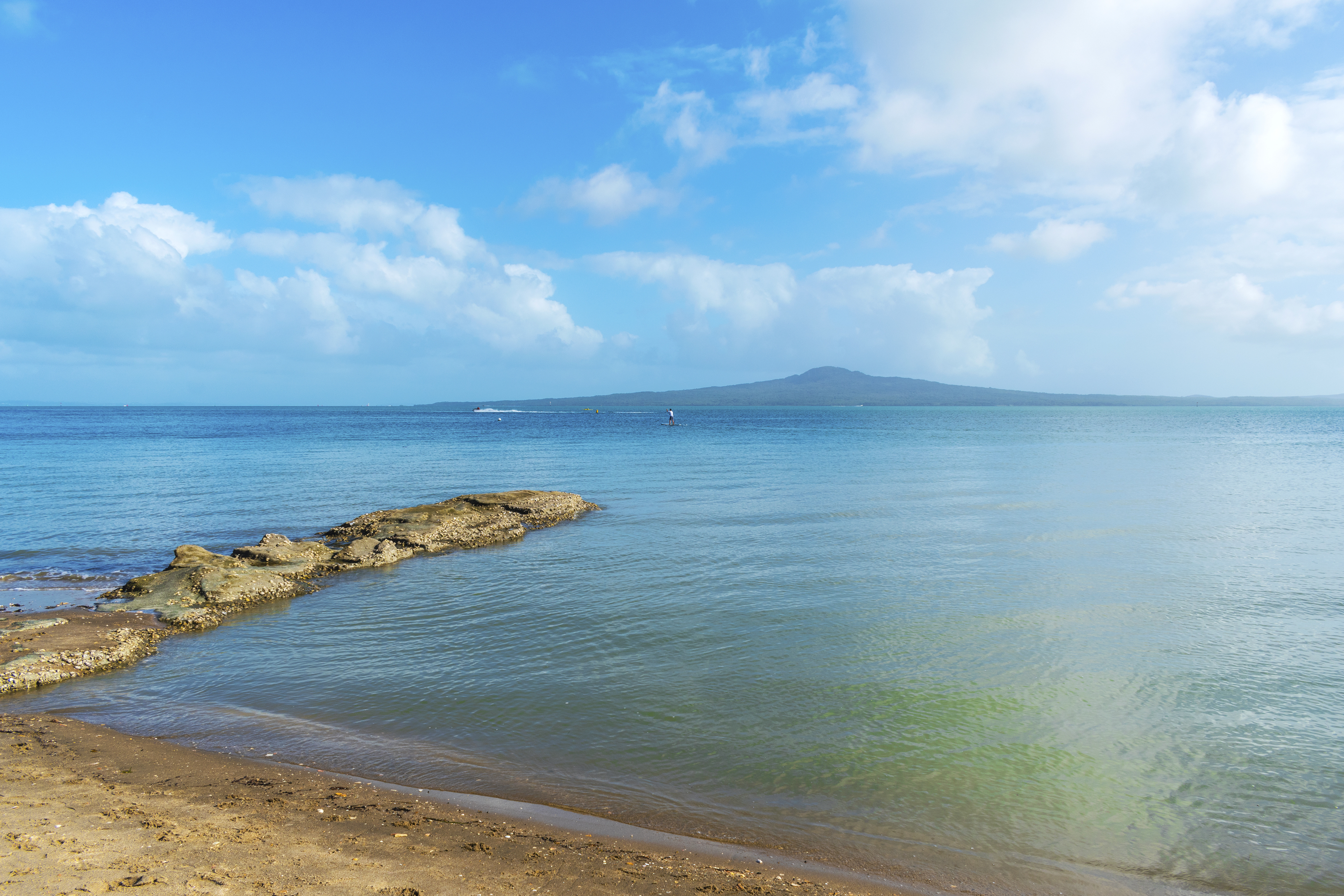 The Bays - Auckland's Paradise Tour