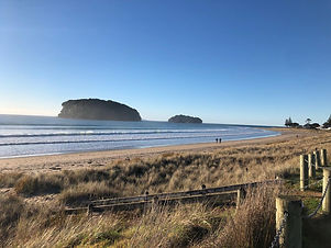 Whangamata Beach in the Coromandel, New Zealand. Part of our Full-Day Tour - The Coromandel Tour