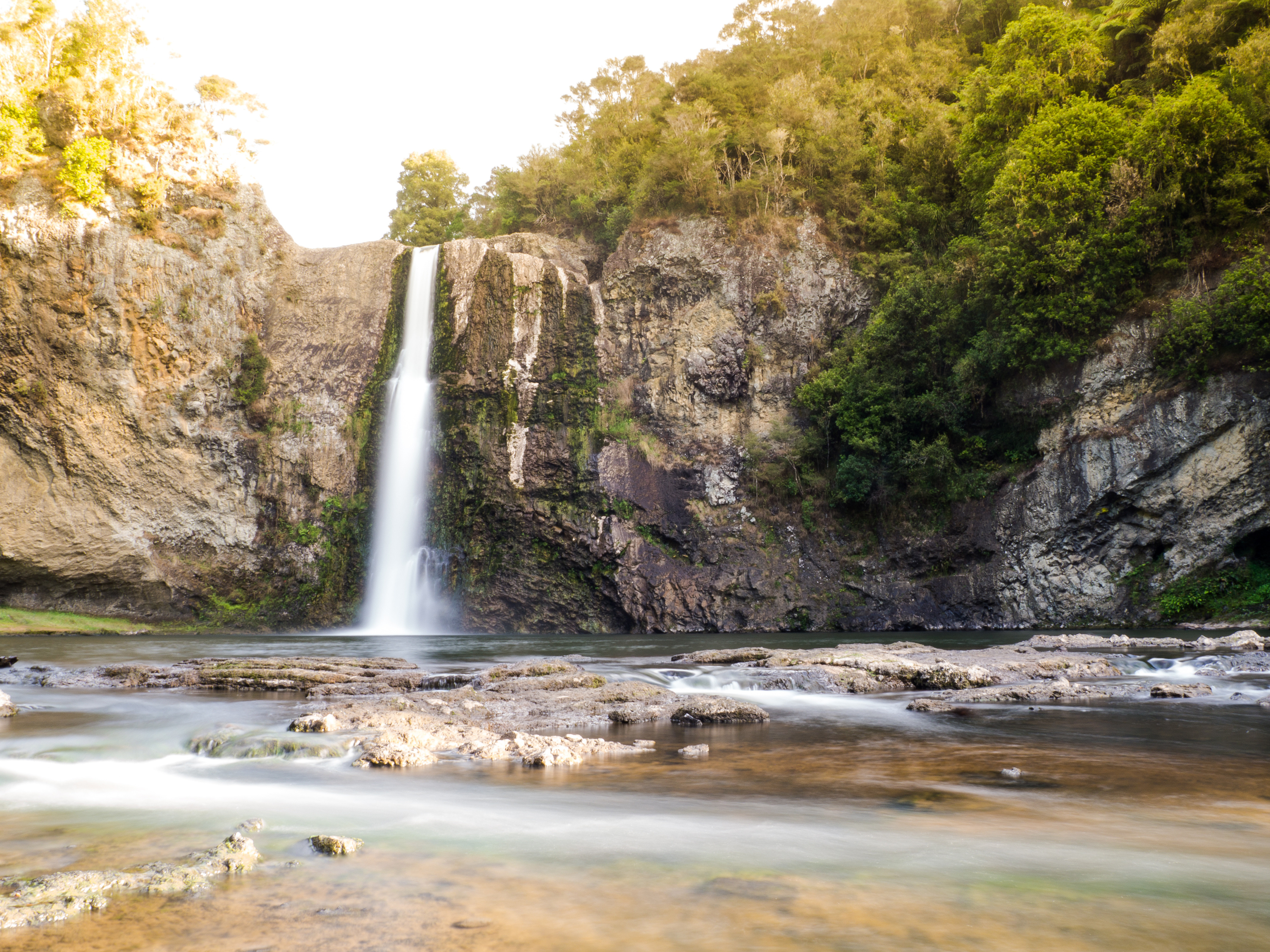 Hunua Falls Tour