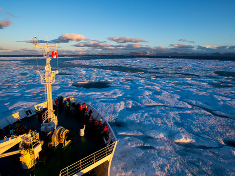 Arctic Impressions