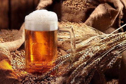 Mug of beer in malt.Pale malt, crystal m