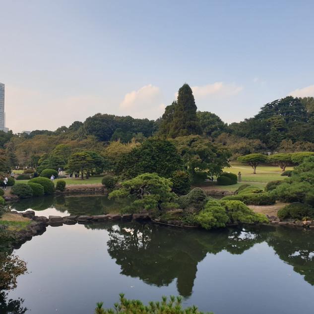 Shinjuku Gyoen Nationl Garden