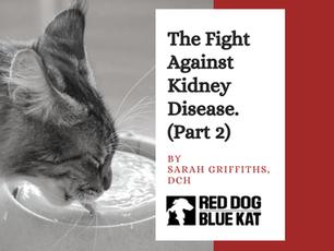 Why Kidney Diets Won't Work (Part 2)