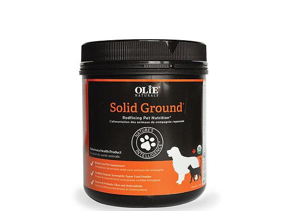 Olie™ Naturals Solid Ground™ 250g (Case of 6)