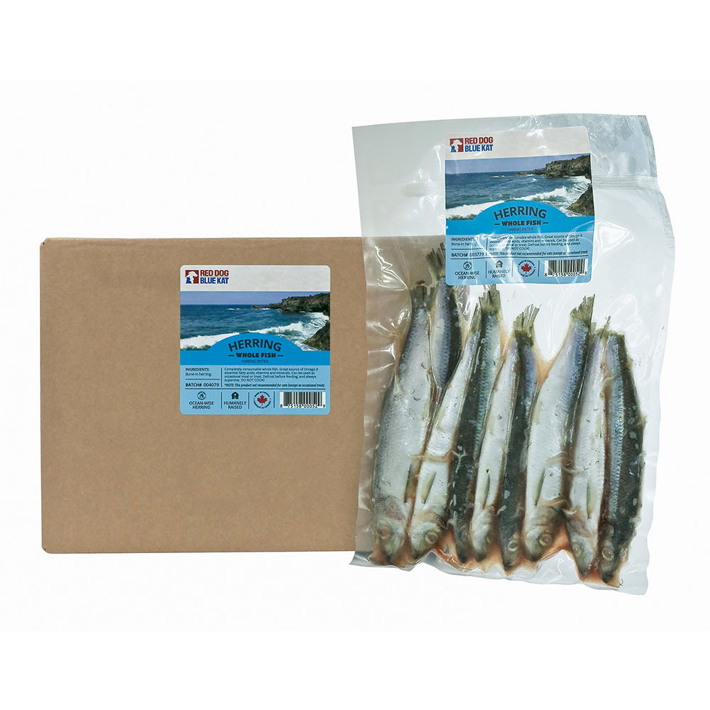 Red Dog Blue Kat Whole Herring to feed your pet as a meal replacement, omega 3 supplement or treat