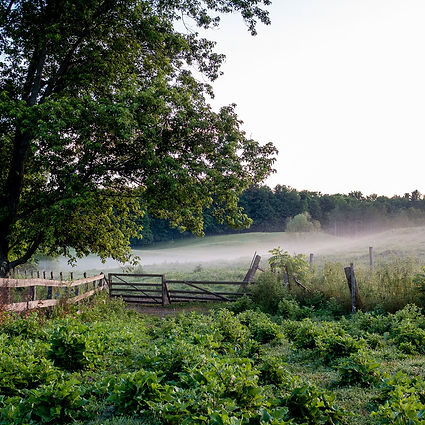 farm-gate.jpg