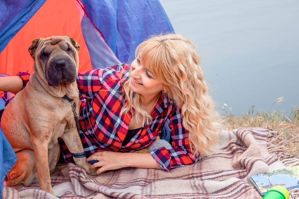 8 Socially Distanced Summer Activities To Enjoy With Your Dogs or Cats    2. Camping